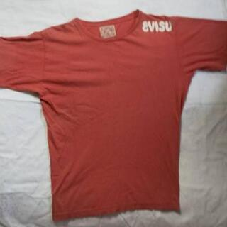 エヴィスTシャツ②