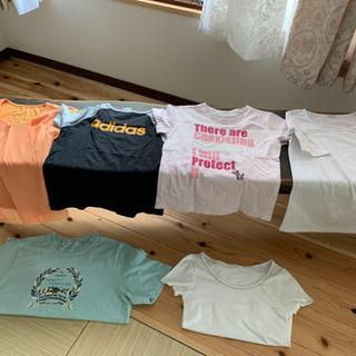 カットソー、Tシャツ