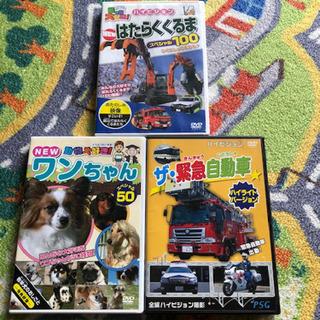 キッズ DVDセット