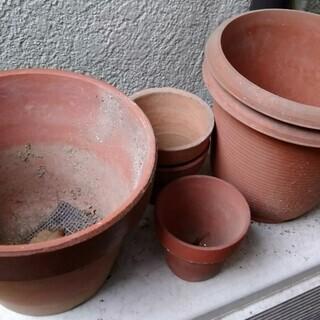 園芸をされている方へ花鉢無料