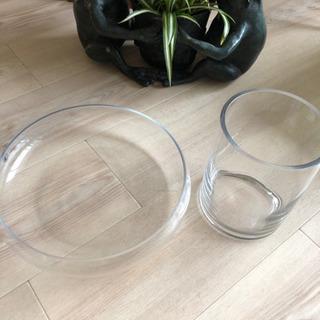 プラントグラス テラリウムグラス