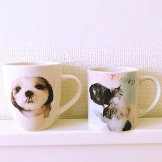 愛犬、猫ちゃんなどのオリジナルマグカップのオーダー