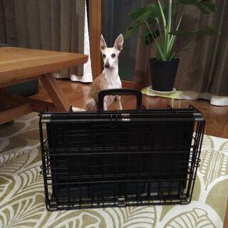 ペット 折り畳みケージ 犬 猫 持ち運び用