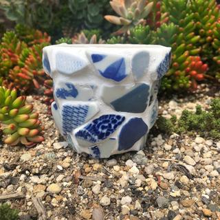 シー陶器の植木鉢