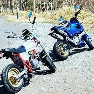 バイク仲間&ツーリングメンバー募集😄