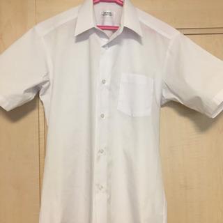男子  中学生  制服  半袖シャツ