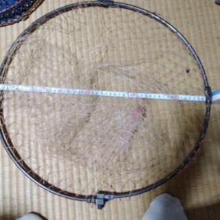 タモ網、約47センチ