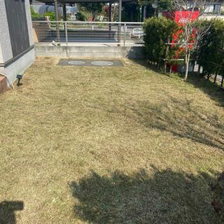 お庭、駐車場、空き地の草取り、草刈り