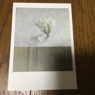 花を生けたコップと壁 ポストカード