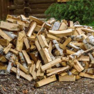 薪になる木を譲ってください!