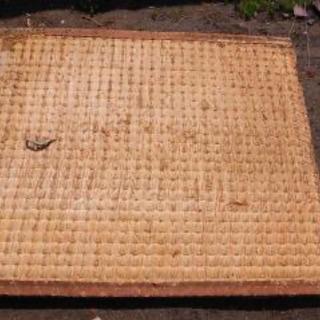 古い藁畳 無料です