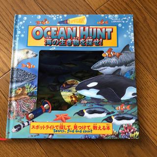 海の生き物を探せ!