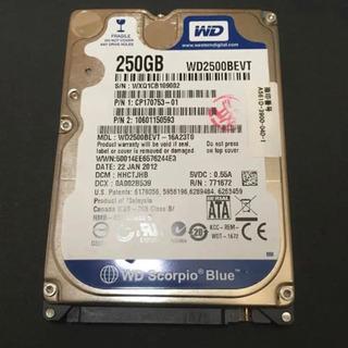 値下げ★ HDD 2.5インチ 250GB 9mm SATA W...