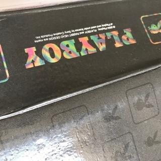 PLAYBOY フォトブック+ポストカード大量