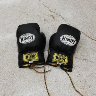 ボクシンググローブ WINDY