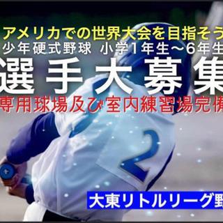 硬式野球 大東リトル 入会者募集!