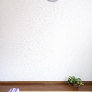 高松 おうちヨガ🏠 オンラインで安全に🎵未経験者大歓迎🙌女性のた...