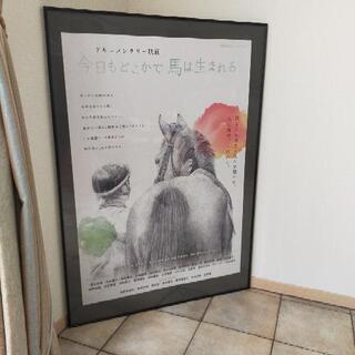 【A0フレーム付】映画「今日もどこかで馬は生まれるポスター」