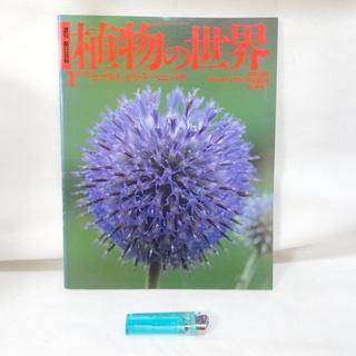 雑誌 朝日百科 植物の世界