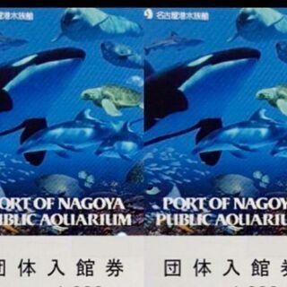 名古屋港水族館 入館券 チケット ⑤