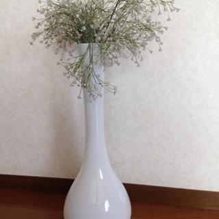 お洒落で、目を引くガラス花瓶