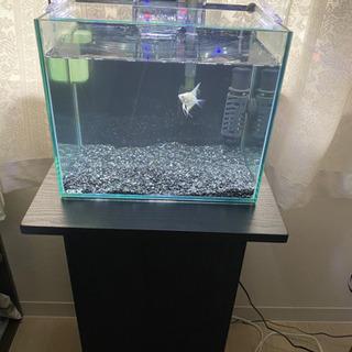 水槽 水槽台 LEDライトセット