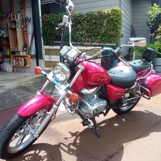 GZ125HS!ファミリー特約で乗れるアメリカンバイク!