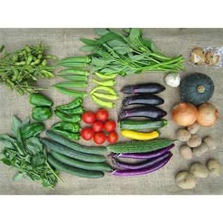 超お得!! オーガニック🥒お野菜セット