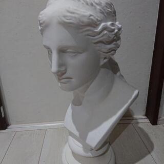 ミロのビーナス 石膏像