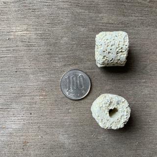 多孔質 大粒リングろ材 10kg