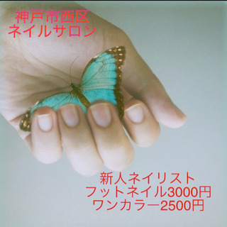 フットネイル3000円!