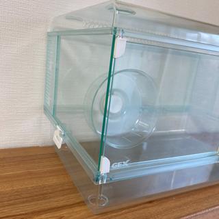 ハムスター/グラスハーモニー ホイール付き 小動物用 450プラス