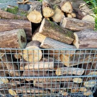 台風により倒木した広葉樹(ニセアカシア)の薪端 約1㎥ 薪ストー...