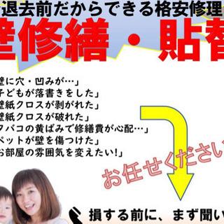 【7/30迄‼️】コロナ企画第2弾‼️壁穴格安修理⭐️