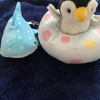 ジンベイザメ ペンギンぬいぐるみセット