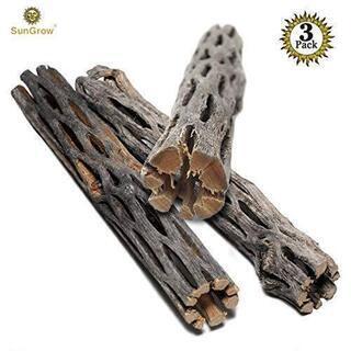 最高の流木 止まり木 アメリカ製③新品❗️ヤドカリ 【お値下げ❗️】