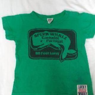 半袖Tシャツ クジラ 緑 95cm