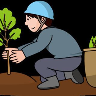 木こり(伐採、植樹)