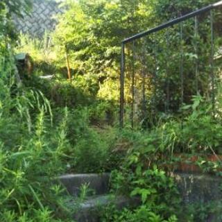 草刈り防草シート張り