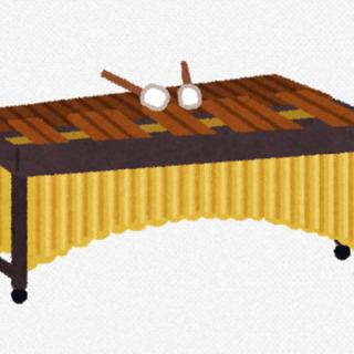 マリンバ・カホン・打楽器教室♪格安