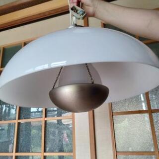 電気の傘 IKEA e26