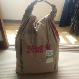 お米です。 買いすぎました…(´・ ・`)