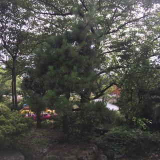 城崎温泉駅★短期OK★海山川に囲まれた自然豊かなシェアハウ…