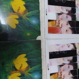 クリアファイル 300円