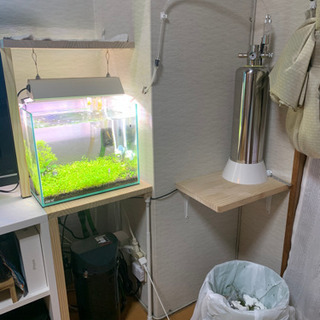 水草水槽一式