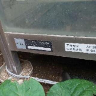小型温室 FHB-1508BL - 鎌倉市