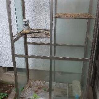 小型温室 FHB-1508BLの画像