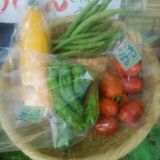 無農薬の野菜セット販売