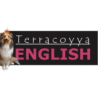 語学教えます【Terracoyya ENGLISH】