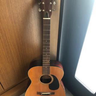 アコースティックギター エリート f120 elite